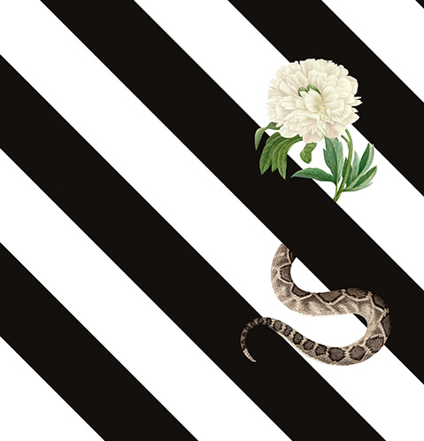 Half flower half snake on black and white striped background